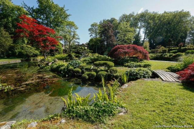 Taille en nuage, érables du japon, hêtres pourpres, jacinthes et tulipes le rendent attrayant tout au long de l'année.