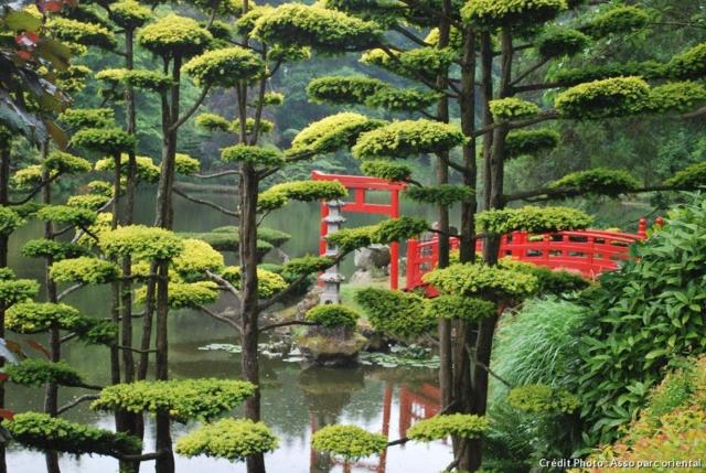 le parc oriental de Maulévrier est un incontournable pour les passionnés du Japon et de l'art des jardins