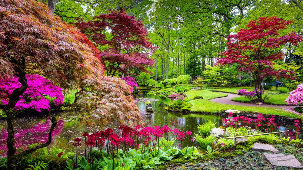 Jardin japonais miniature : 10 photos et idées pour s'inspirer !